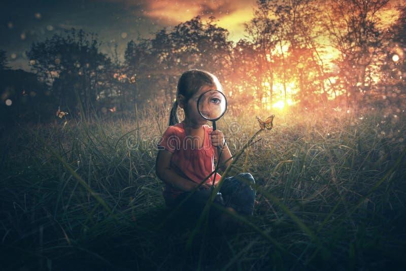 Бабочки маленькой девочки наблюдая стоковое фото rf