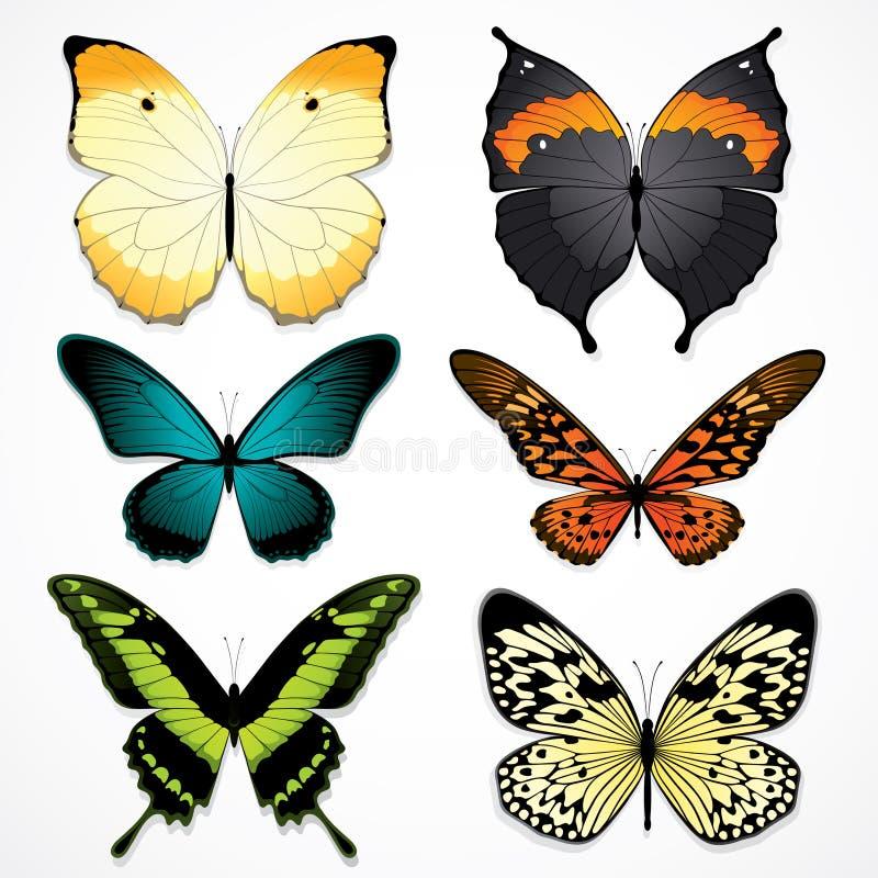 бабочки цветастые иллюстрация штока