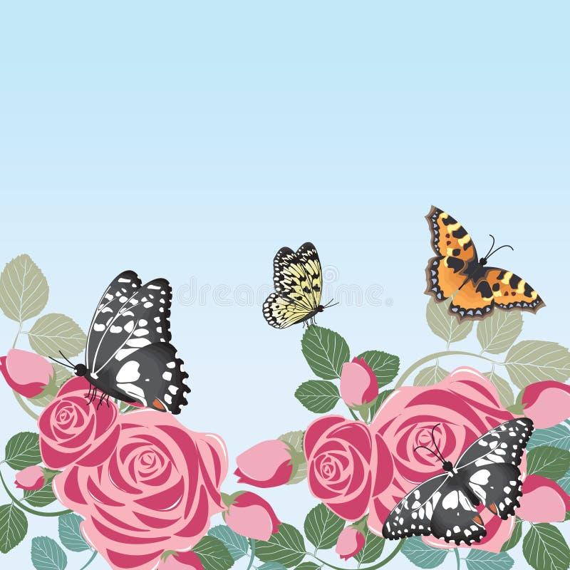 Бабочки цветут флористическая предпосылка рамки весны лета иллюстрация штока