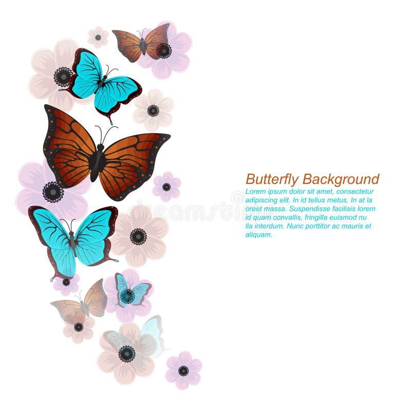Бабочки цветут флористическая предпосылка рамки весны лета иллюстрация вектора