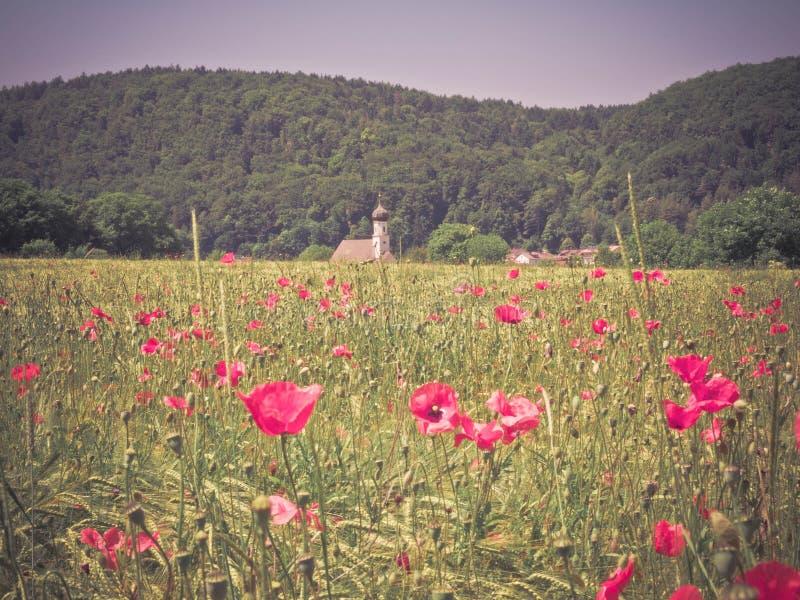 Баварские поля стоковое изображение