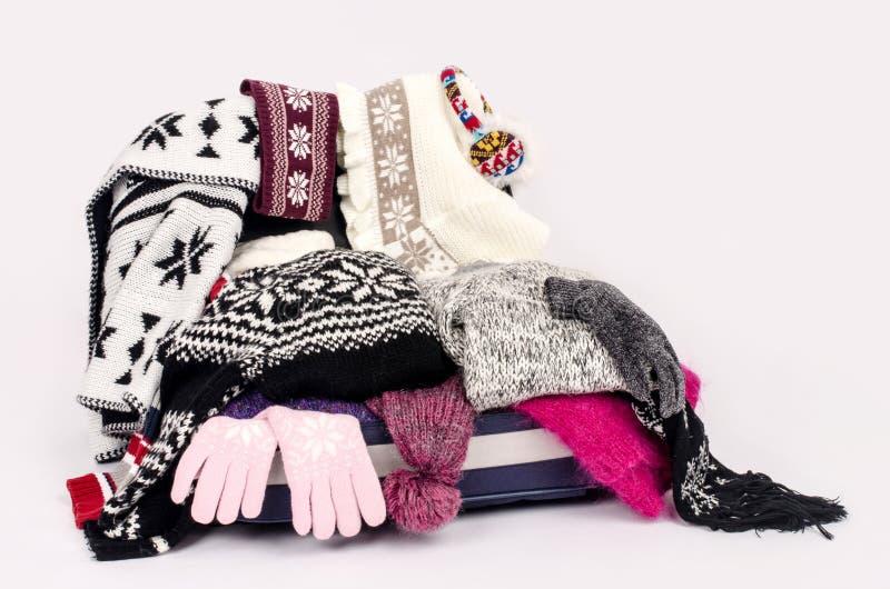 Багаж зимы. стоковые фотографии rf