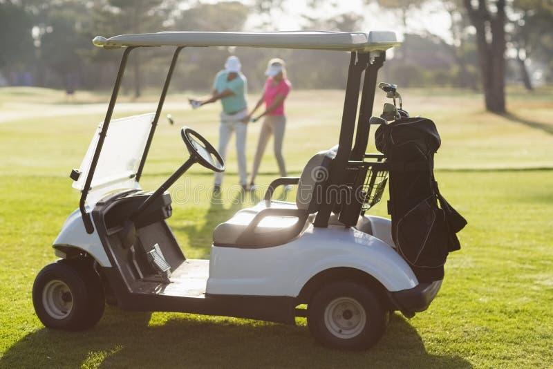 Багги гольфа на поле во время солнечного дня стоковые изображения