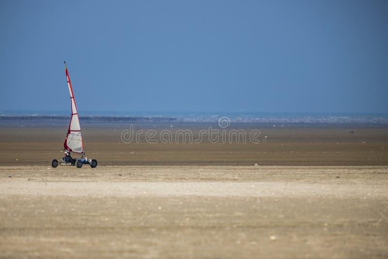 Багги змея на пляже стоковые фотографии rf