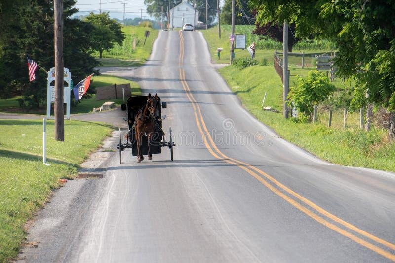 Багги фуры в стране Ланкастера Пенсильвании Амиша стоковые изображения
