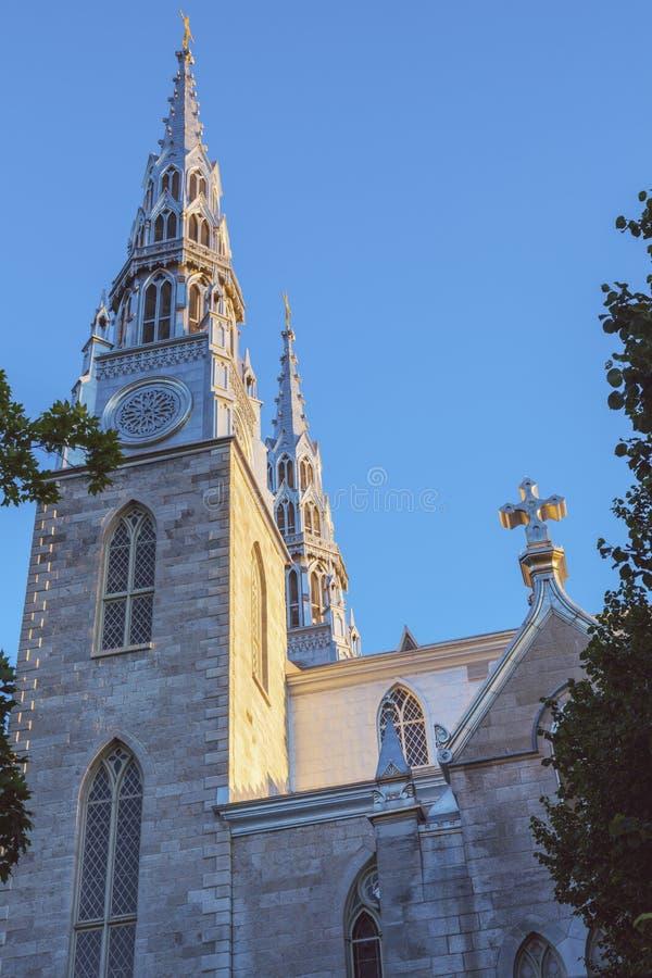 Базилика собора Нотре Даме в Оттава стоковое фото rf