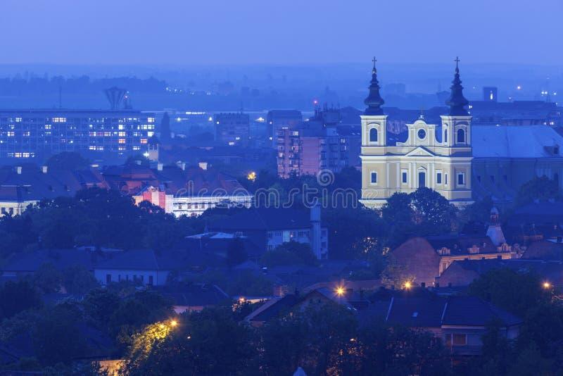 Базилика собора St Mary в Oradea стоковое изображение rf