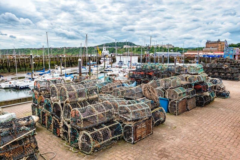 Баки омара на гавани Scarborough, Йоркшире, Англии стоковая фотография rf