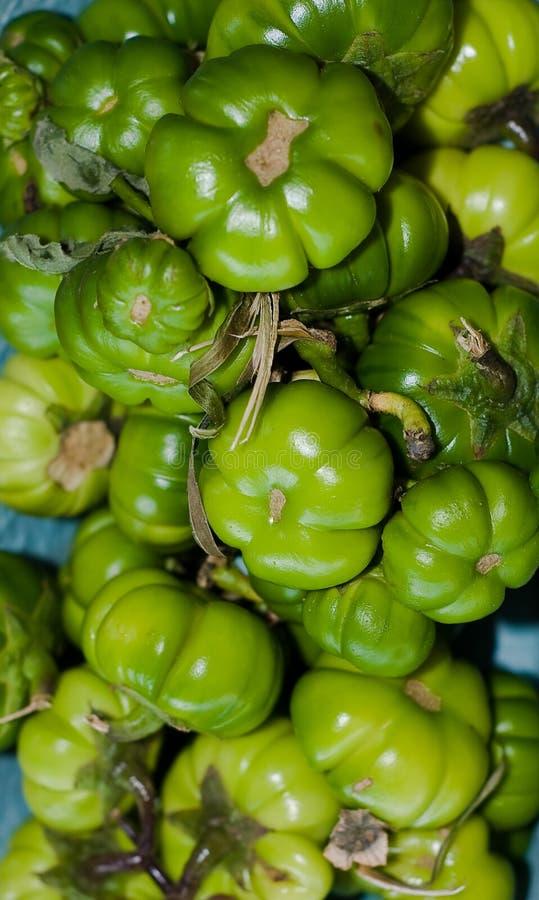 баклажаны bitterballs стоковые фото