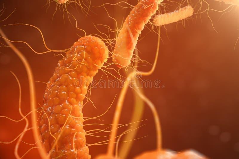 бактерии вируса иллюстрации 3D Вирусная инфекция причиняя хроническую болезнь, уменьшенную невосприимчивость Красные бактерии вни иллюстрация штока