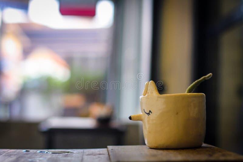 Бак завода Fox на деревянном столе, фоновом изображении bokeh стоковое фото rf