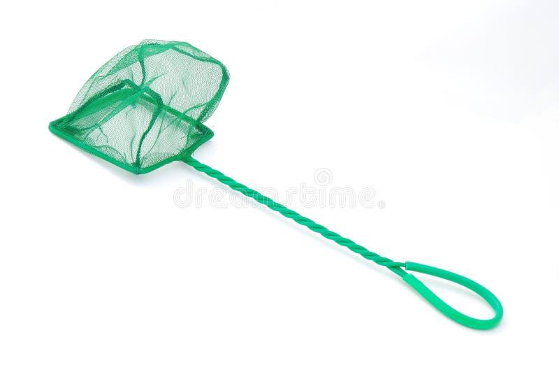 бак рыб зеленый сетчатый стоковые фото