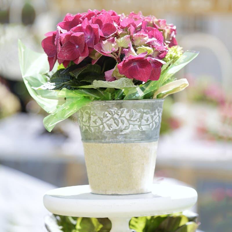 Бак с розовыми цветками стоковая фотография