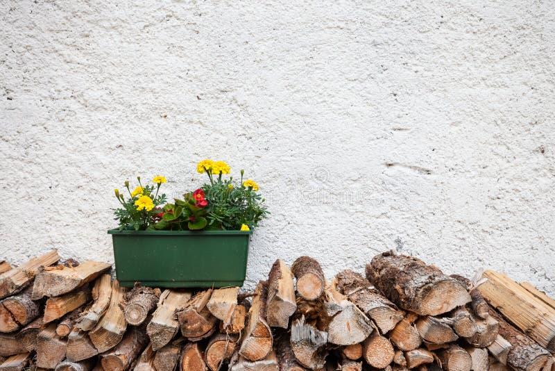Бак цветка деревянный стоковая фотография