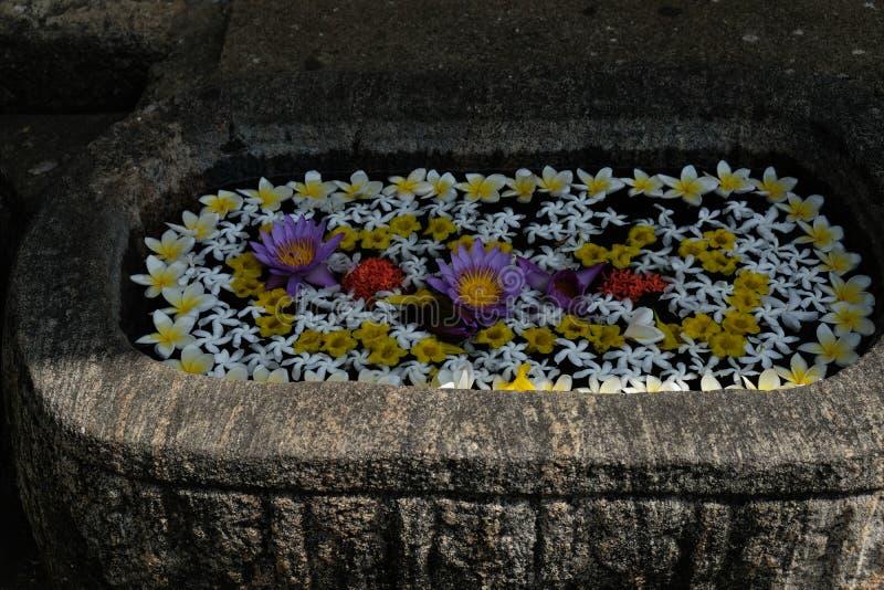 Бак цветков в центре в Шри-Ланка, Азии ayurveda стоковое изображение rf