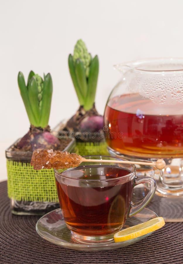 Бак чая и hiacinths стоковые изображения