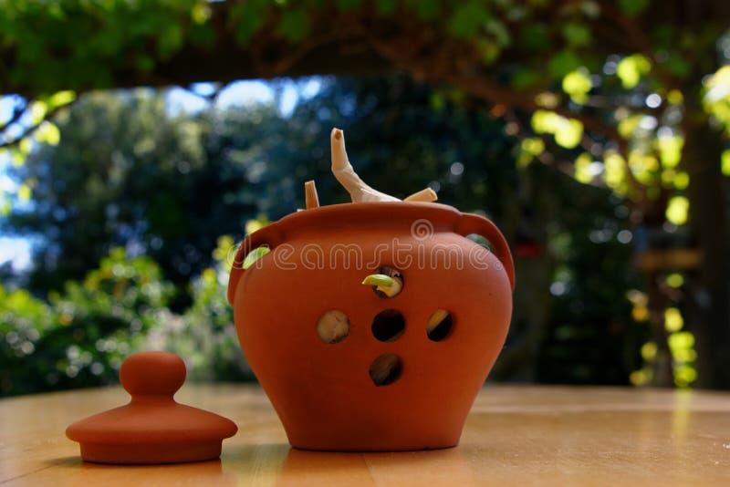 Бак чеснока снаружи на деревянном столе, одном из шариков пускает ростии стоковые фото