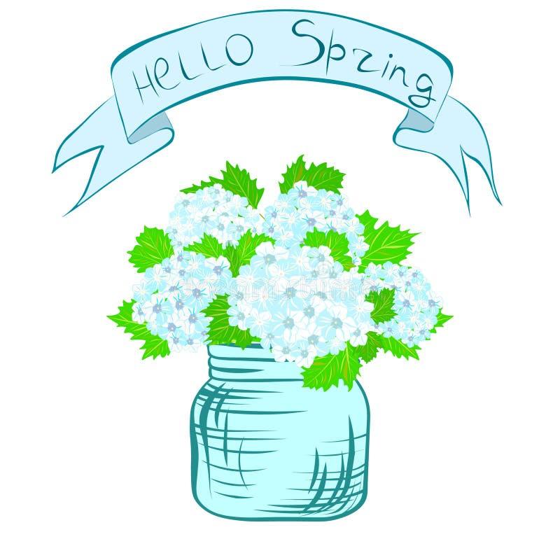 бак hydrangea иллюстрация штока
