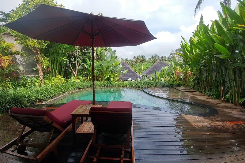 Бали, Индонезия - 6-ое мая 2019: Вилла курорта sebali Puri тропическая в регионе Ubud Бунгало в джунглях с частным бассейном и стоковые изображения