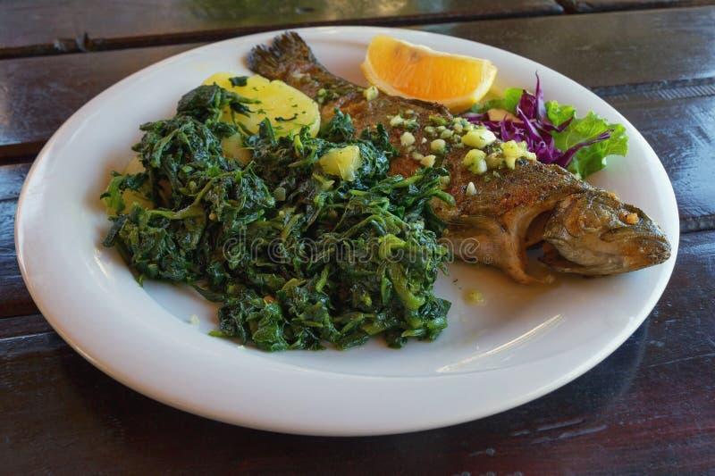 Балканская кухня Зажаренная форель рыб с густолиственными зелеными овощами стоковая фотография