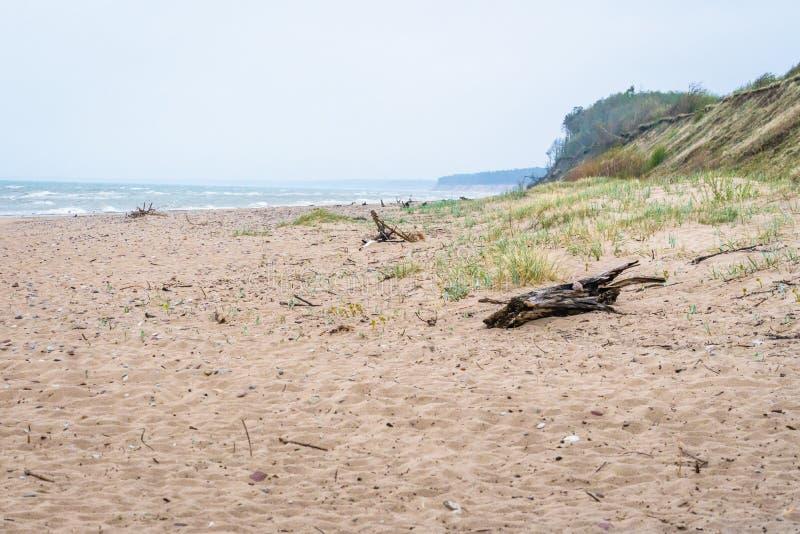 Балтийское море и песчаный пляж стоковое изображение rf