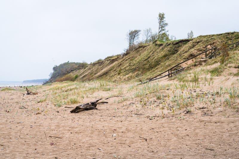 Балтийское море и песчаный пляж стоковое фото rf