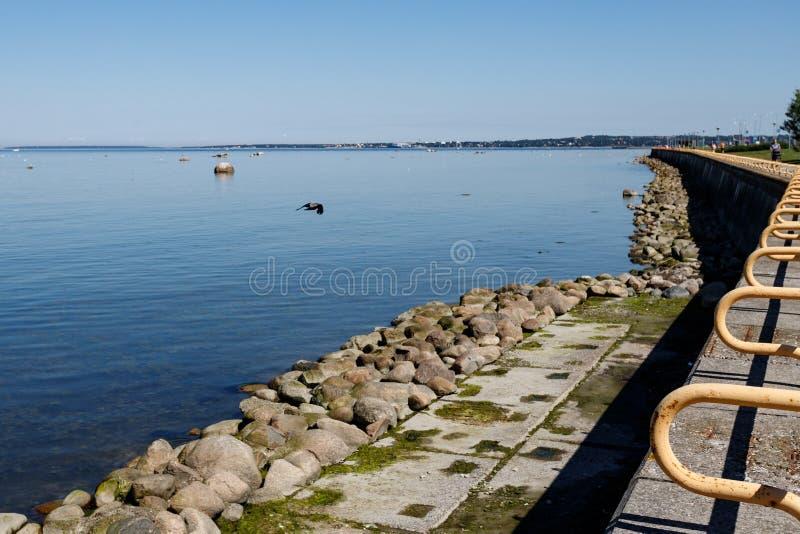 Балтийское море promenad Pirita вперед, Таллин стоковое фото