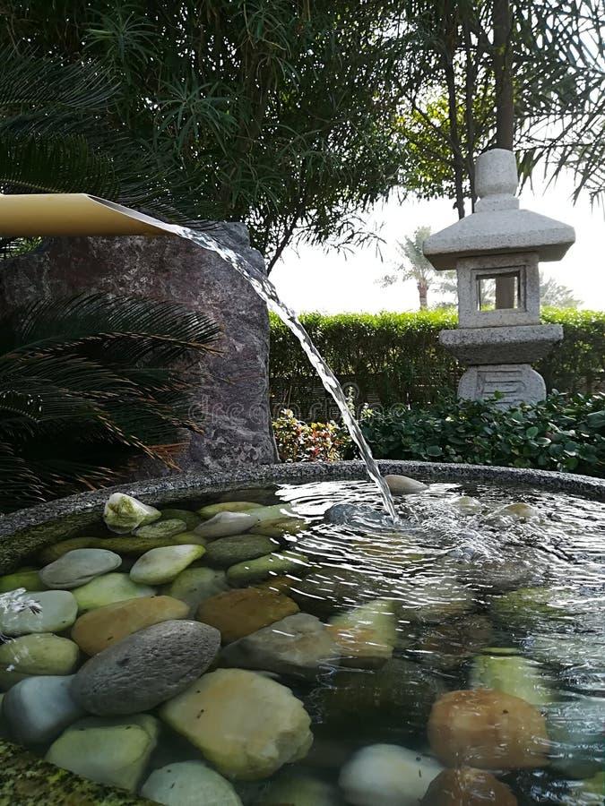 Бамбуковая вода стоковые фото