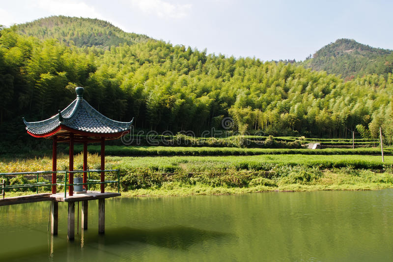 Бамбуковая гора стоковые изображения rf