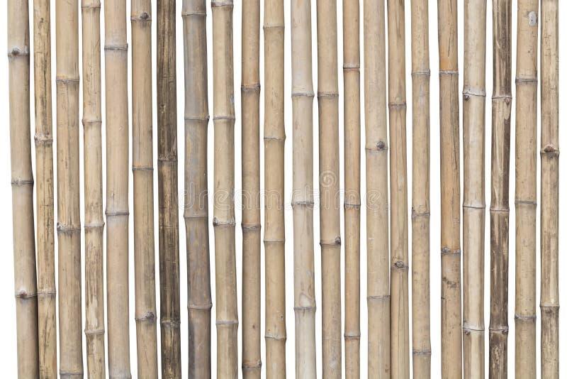 Бамбуковая загородка изолированная на белой предпосылке Путь клиппирования стоковые изображения rf