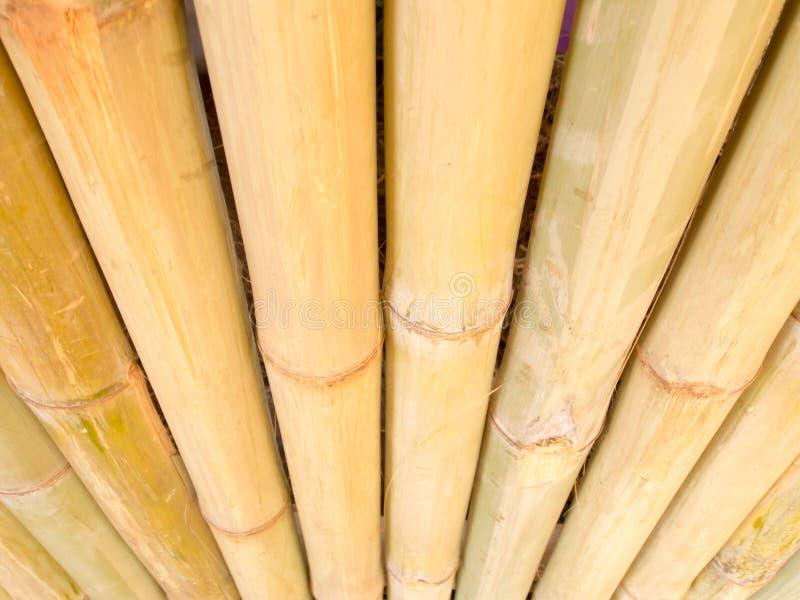 Бамбуковая предпосылка загородки стоковая фотография
