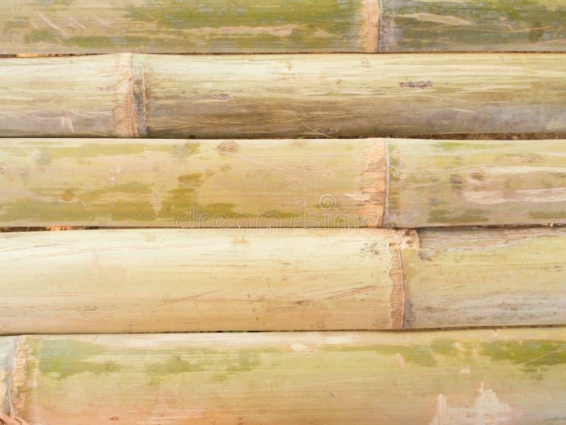 Бамбуковая предпосылка загородки стоковое фото