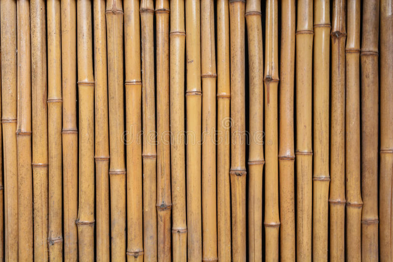 Бамбуковая стена дома стоковое изображение