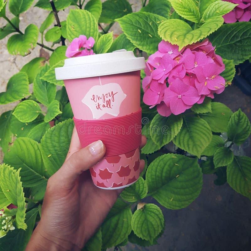 Бамбуковая чашка стоковая фотография