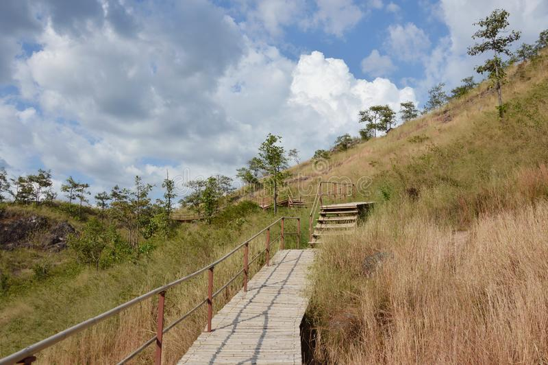 бамбуковые лестницы до горы Lon khao в Таиланде стоковые изображения rf