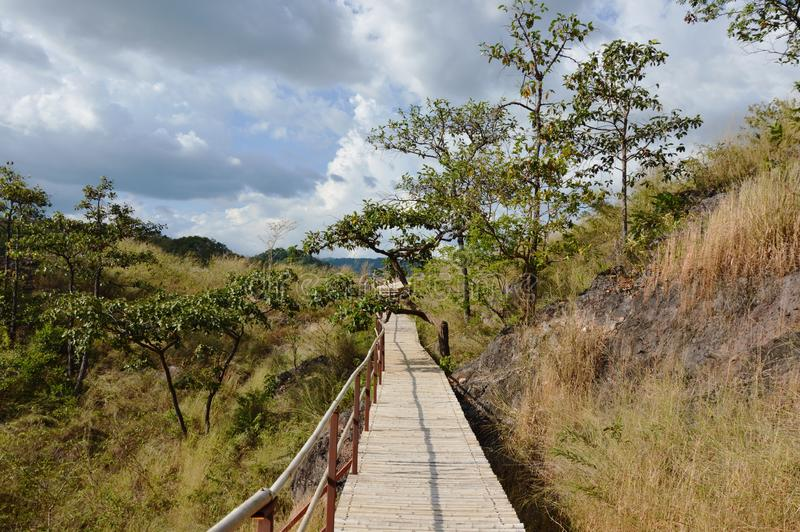 бамбуковые лестницы до горы Lon khao в Таиланде стоковое фото rf