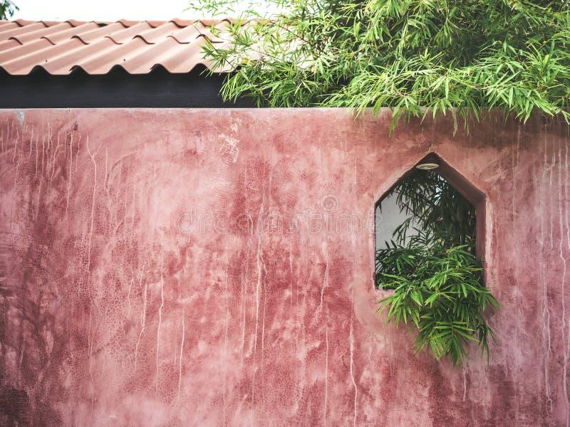 Бамбуковые листья на красной обнаженной предпосылке текстуры бетонной стены стоковое изображение