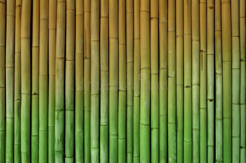 Бамбуковый зеленый цвет и желтый цвет полутонового изображения предпосылки загородки стоковое фото rf