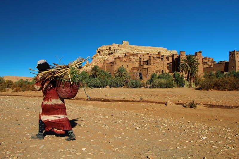 Бамбуковый избавитель в Марокко стоковое фото rf