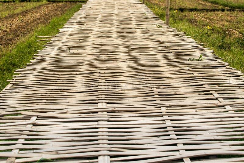 Бамбуковый мост сделан бамбука стоковые фотографии rf