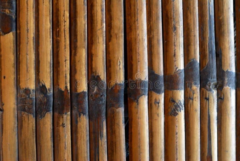 Бамбуковый сор стоковая фотография rf