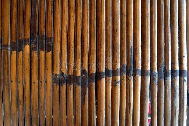 Бамбуковый сор стоковые изображения rf