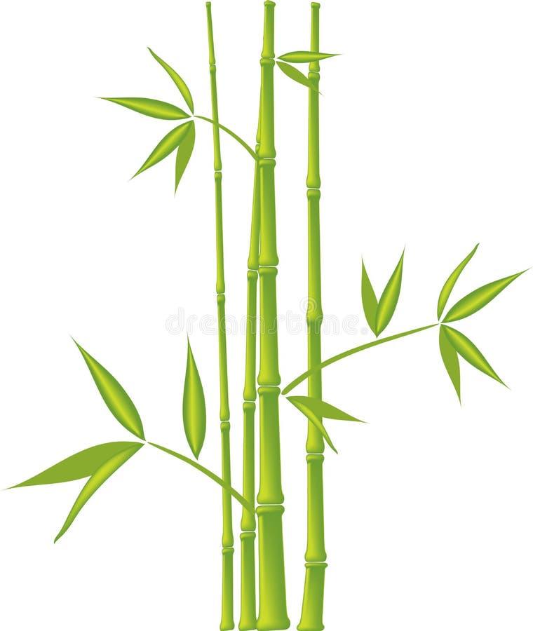 Бамбук, вектор (сетка) бесплатная иллюстрация