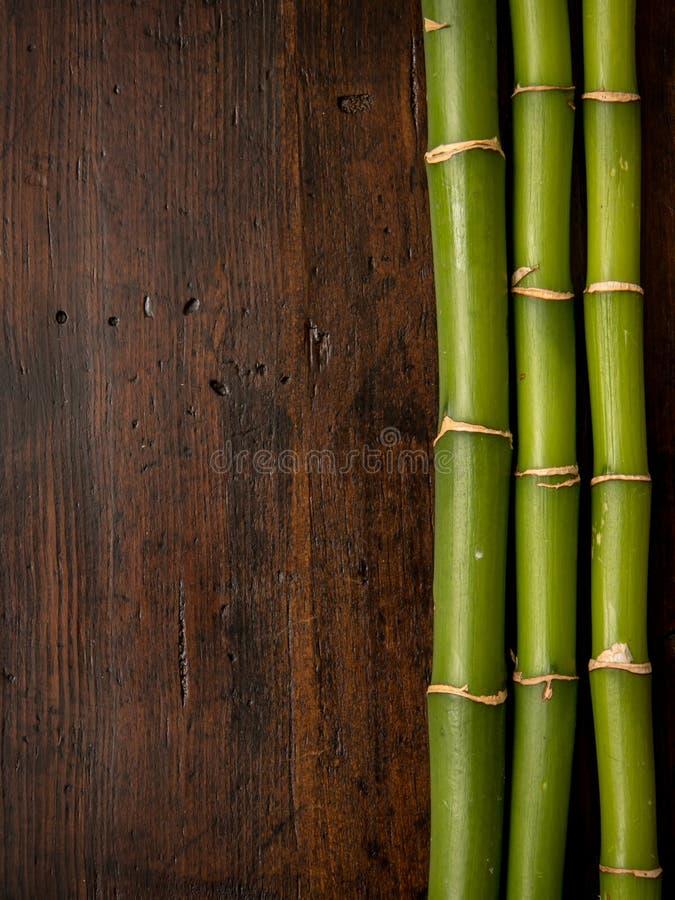 Бамбук на деревянной предпосылке стоковые фотографии rf