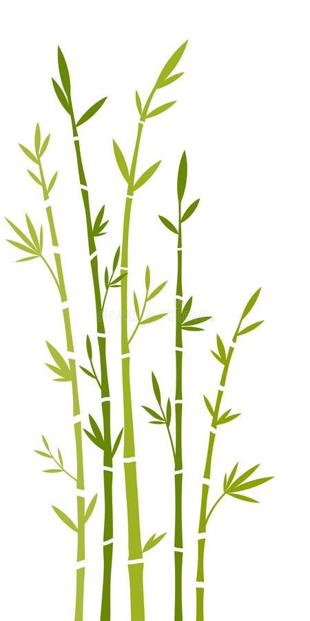 бамбук бесплатная иллюстрация