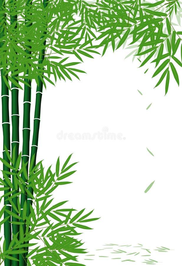 Бамбук иллюстрация штока