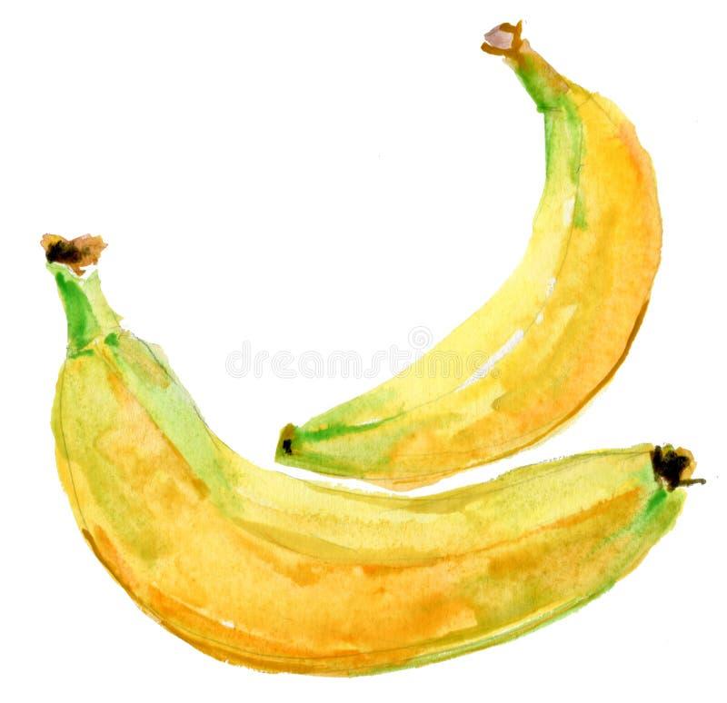 Бананы иллюстрация вектора