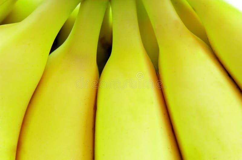 бананы зрелые стоковые фото