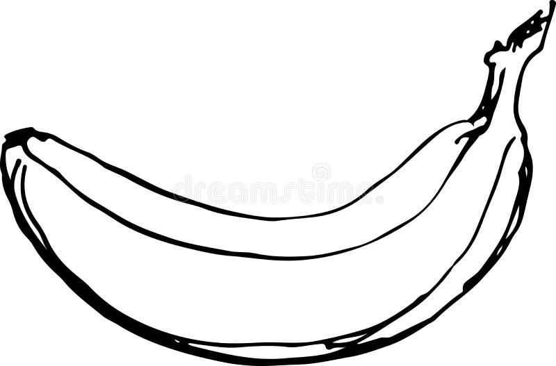 Банан также вектор иллюстрации притяжки corel стоковые фото