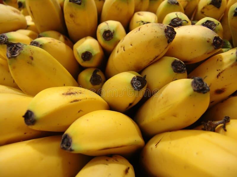 банан стоковые изображения